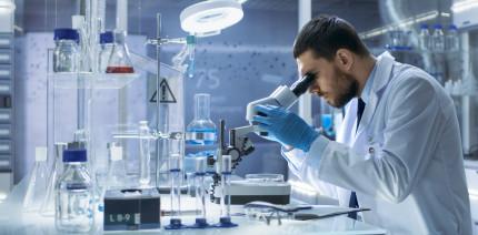 Membranen im Vergleich: nicht resorbierbar vs. bioresorbierbar
