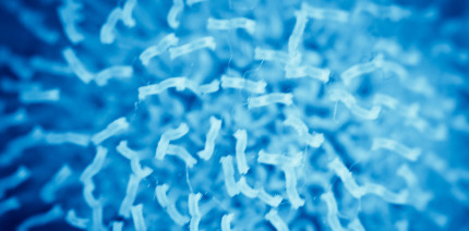 Bakterien gegen Parodontitis – macht das Sinn?