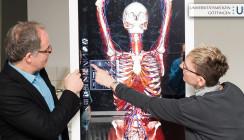 Anatomie in 3-D: Virtuelle Seziertische unterstützen moderne Lehre an der UMG