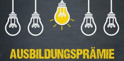 """Förderoptionen: Bundesprogramm """"Ausbildungsplätze sichern"""""""