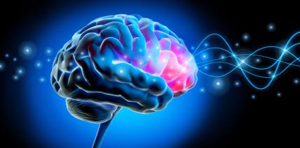 Beeinträchtigt Parodontitis die Denkleistung?
