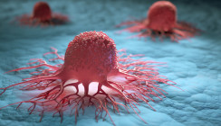 Wie Humane Papillomviren die Krebsentstehung ankurbeln