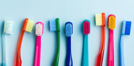 Ein Kunstwerk aus Zahnbürsten knackt den Weltrekord