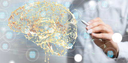 Künstliche Intelligenz: Einfachere Behandlung bei Fehlbildungen