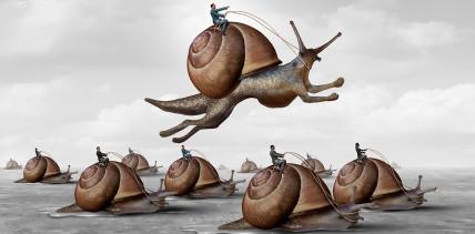 Unternehmensführung: Die Kultur hinkt der Struktur oft hinterher