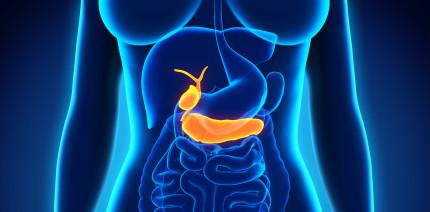 Mikrobiom der Zunge – Indikator für Bauchspeicheldrüsenkrebs