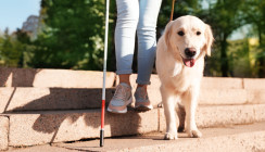 Blinde Frau bekommt recht: Führhund darf mit in Arztpraxis