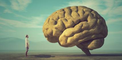 Bruxismus verantwortlich für MS, Alzheimer & Co.?