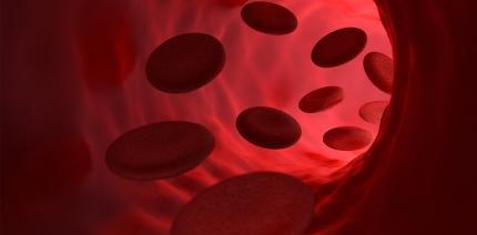 Endokarditis-Risiko: Aufklärung gefährdeter Patienten mangelhaft