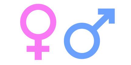 Implantatversorgung: Welche Rolle spielt das Geschlecht?