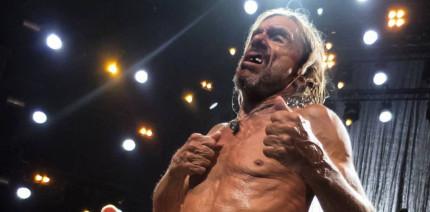 Hart im Nehmen: Iggy Pop rockt Festival trotz Zahnverlust