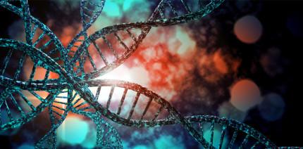 Gene haben keinen Einfluss auf Karies