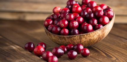 Polyphenole aus Cranberrys bald in Mundpflegeprodukten?