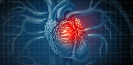 Kinder mit Karies haben später erhöhtes Herzinfarktrisiko