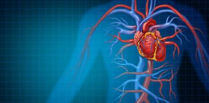 """Leitlinie """"Zahnärztlich-chirurgische Sanierung vor Herzklappenersatz"""""""