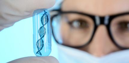 Lippen-Kiefer-Gaumenspalte: Genstudie veröffentlicht