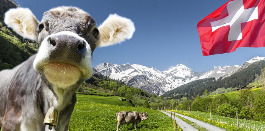 Die Schweiz: Beste Lebensqualität für Zahnärzte und ZFAs