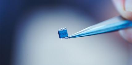 Parodontitis: Früherkennung durch Sensor im Mund