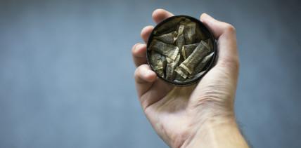 Snus boomt: Schweizer Zahnärzte sind alarmiert