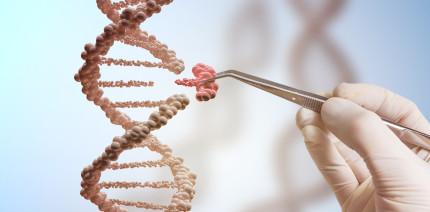 Genetische Ursachen von Speicheldrüsentumoren aufgedeckt