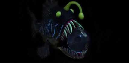 Warum Tiefsee-Drachenfische durchsichtige Zähne haben