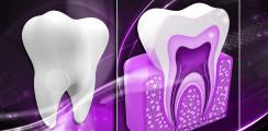Könnten sich Zähne schon bald selbst regenerieren?