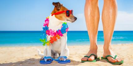 Mit Schlappen am Strand – ein typischer Urlaub der Mediziner?