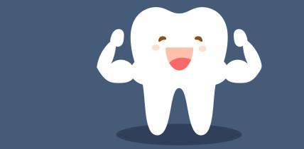 Geheimnis gelüftet: Deshalb ist Zahnschmelz hart wie Stahl