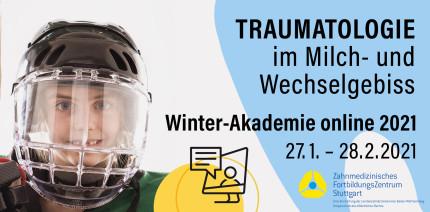 Winter-Akademie 2021 des ZFZ Stuttgart online