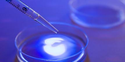 Plasma trifft Medizin - Chancen und Perspektiven