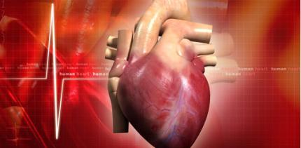 Inselspital Bern: Herztechniker räumen Preise ab
