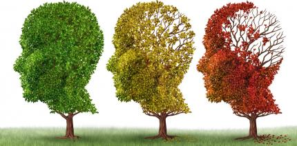 Speicheltest soll frühzeitig vor Alzheimer warnen