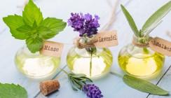 Studie: Ätherische Öle zur Parodontitisbehandlung im Test