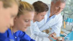 Gute Rahmenbedingungen für Azubis in Berliner Zahnarztpraxen
