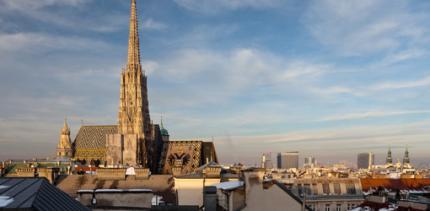 100 Ärzte-Gesellschaften bis Ende 2011 in Wien