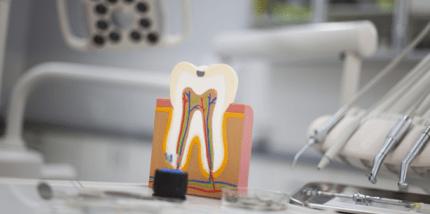 Zahnmedizin in Deutschland auf hohem Niveau