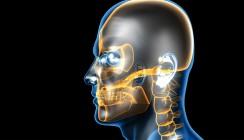 Digital in die Zukunft mit dental bauer