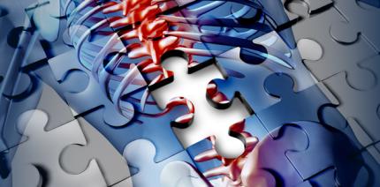 Ergonomie – mehr als ein gesunder Rücken!