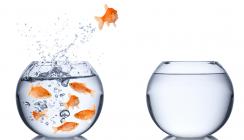 Fluktuationskosten – Wie teuer ist ein Personalwechsel wirklich?