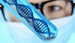 Forscher identifizieren Parodontitisgene