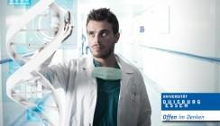 Neuartige Nano-Paste heilt Knochendefekte