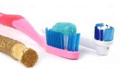 Zähneputzen ohne Plastik – der Miswak machts möglich
