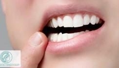 Schweineknochen für schmerzempfindliche Zähne