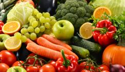 Parodontale Ernährungsberatung in der Praxis – Warum?
