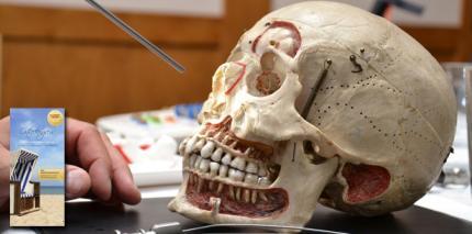 Implantologie am Ostseestrand