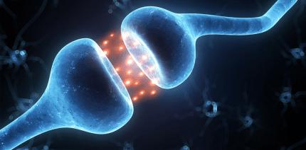 Forscher entwickeln Schmerzmittel ohne Nebenwirkungen