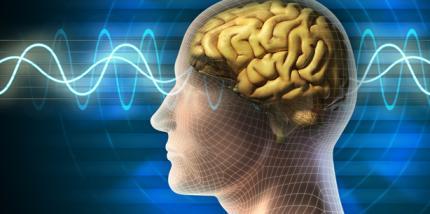 Psychologie-Studie: Vertrautheitsgefühl beeinflusst unsere Entscheidungen