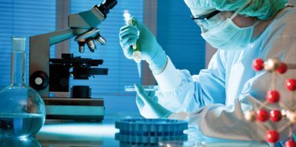 Neues Bakterium Streptococcus tigurinus erforscht