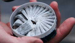 Schweizer Zahnärzte warnen vor Snus-Konsum
