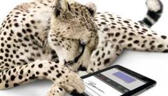 CHARLY von solutio: Anamnesebögen jetzt digital signieren